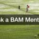 Ask a BAM Mentor HR