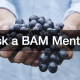 Ask a BAM Mentor spiritual fruit
