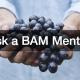 Ask a BAM Mentor spiritual fruit