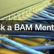 Ask a BAM Mentor IT