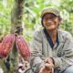 cocoa farmer peru