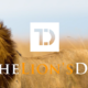 Event - The Lion's Den